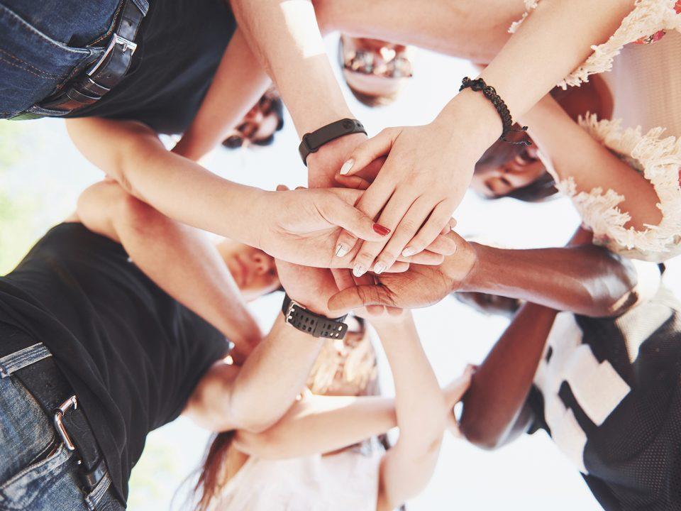 teamwork 6